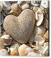 sea shell Heart Acrylic Print