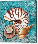 Sea Shells Original Coastal Painting Colorful Nautilus Art By Megan Duncanson Acrylic Print by Megan Duncanson
