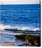 Sea Shelves Acrylic Print