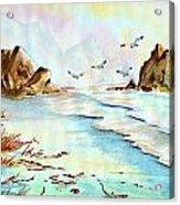 Sea Shore Impressions Acrylic Print