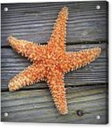 Sea Star On Deck 2 Acrylic Print
