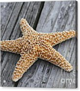 Sea Star On Deck Acrylic Print