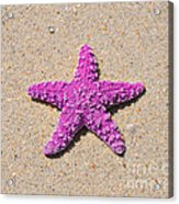 Sea Star - Pink Acrylic Print