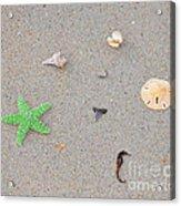 Sea Swag - Green Acrylic Print
