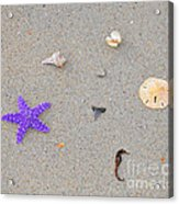 Sea Swag - Purple Acrylic Print