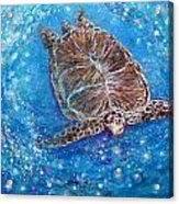 Sea Turtle Mr. Longevity Acrylic Print
