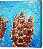 Sea Turtles Swimming Towards The Light Together Acrylic Print