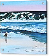 Seagull In The Sand Acrylic Print