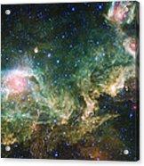 Seagull Nebula Acrylic Print