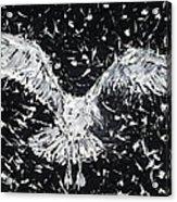 Seagull - Oil Portrait Acrylic Print