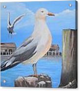 Seagull On Piling Acrylic Print