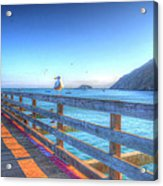Seagulls And Ocean Acrylic Print