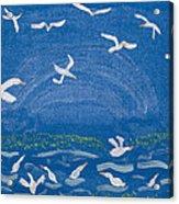 Seagulls Acrylic Print by Melissa Dawn