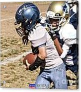 Seahawks Vs Bruins 8383 Acrylic Print