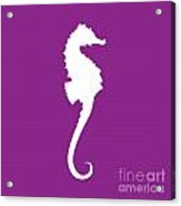 Seahorse In Purple And White Acrylic Print