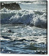 Seal Surfing Waves Acrylic Print