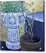 Sean's Planter Acrylic Print