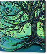 Searching Branches Acrylic Print