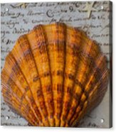 Seashell And Words Acrylic Print