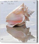Seashell Be Still Acrylic Print