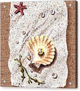 Seashell With The Pearl Sea Star And Seaweed  Acrylic Print