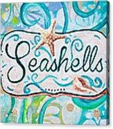 Seashells IIi Acrylic Print