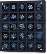 Snowflake Collage - Season 2013 Dark Crystals Acrylic Print