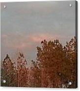 Seasonably Fall Acrylic Print