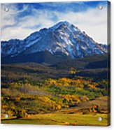 Seasons Change Acrylic Print