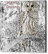 Season's Greetings Card Winter Barred Owl Acrylic Print