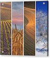 Seasons Of The Palouse Acrylic Print by Latah Trail Foundation