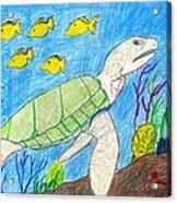 Seaturtle Swimming The Reef Acrylic Print
