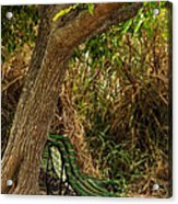 Secluded Park Benches Acrylic Print by Jess Kraft