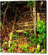 Secret Stairway Acrylic Print