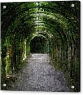 Secret Tunnel Acrylic Print