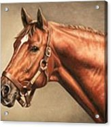 Secretariat At Claiborne Acrylic Print by Thomas Allen Pauly