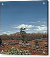 Sedona Cactus Az Acrylic Print