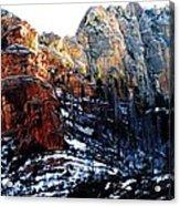 Sedona Wonderland Acrylic Print by Todd Sherlock