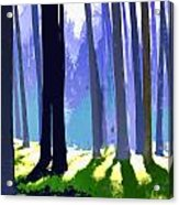 See The Forest For The Trees Acrylic Print
