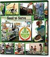 Seed To Serve Rw2k14 Acrylic Print