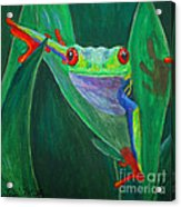 Seeing Eye To Eye Acrylic Print by Terri Maddin-Miller