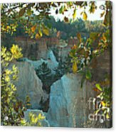 Seeing Through The Trees Acrylic Print