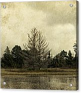 Seney Coffee With Cream Acrylic Print