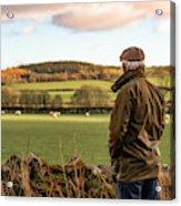 Senior man looking at field with sheep Acrylic Print