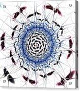 Sensory Overload Acrylic Print