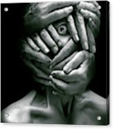 Sensus Videndi Acrylic Print