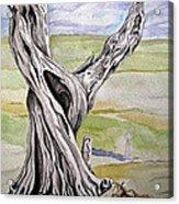 Sentinel Tree Acrylic Print