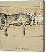 Separation, 1930, 1st Edition Acrylic Print