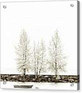 Sepia Square Tree Acrylic Print
