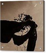 Sepia Acrylic Print